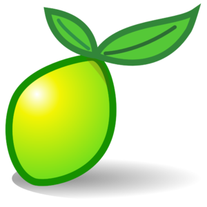 schulung Limesurvey logo
